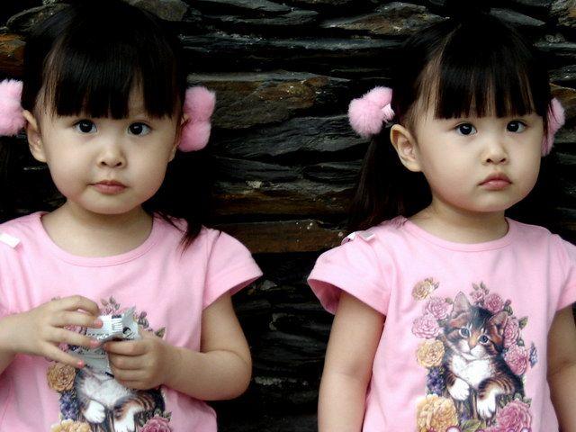 fakta anak kembar